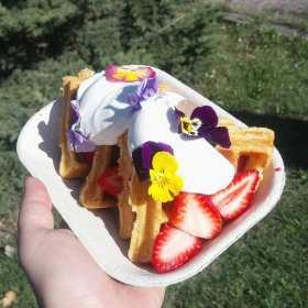 Floral dessert waffle magic.
